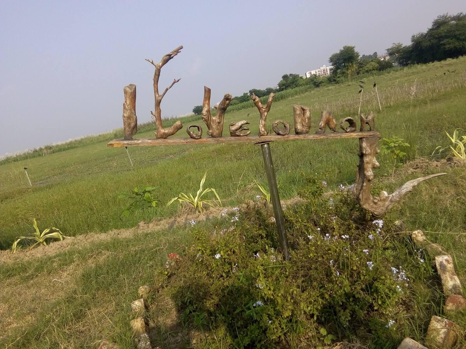 Bhagalpur Driftwood park wallpaper